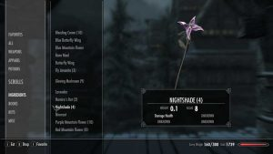 Inventory in the RPG Skyrim